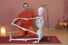 Kursai: Praktinė jogos anatomija – Kaip asanos pagerina kūno laikyseną