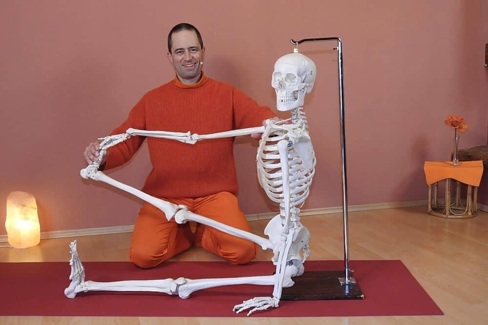 Kursai: Praktinė jogos anatomija – dviejų asanų supratimas 2